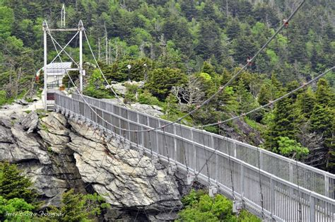 grandfather mountain swinging bridge 17 best images about charlotte nc and it s big back yard