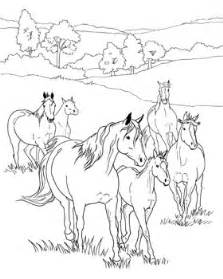 Herd Of Horses Colouring Pages sketch template