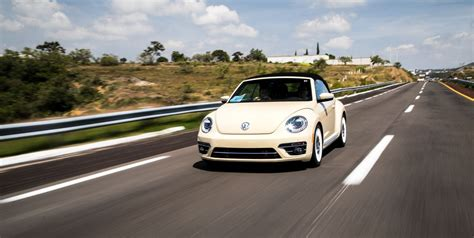 volkswagen beetle final edition   dressed bug