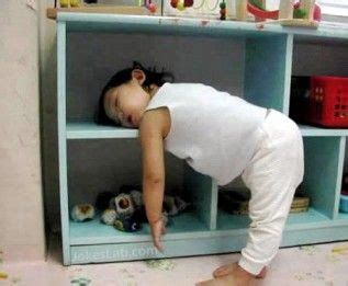 my sleeps everywhere books photos prove can fall asleep anywhere cloud b
