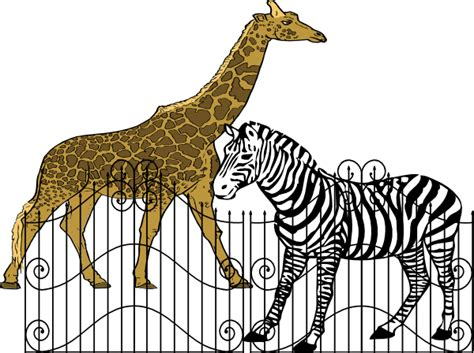 zoo animal clipart zoo animals clip at clker vector clip