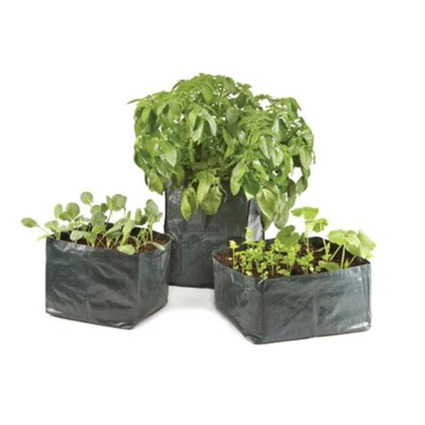 Bag Planter by 3x Reusable Trough Bag Planters The Garden Factory