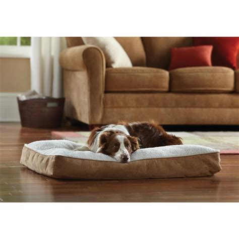animal planet dog bed animal planet new beige micro suede sherpa pillow memory foam dog bed l bhfo ebay