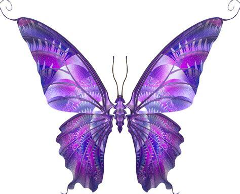 imagenes mariposas de colores brillantes marcos gratis para fotos mariposas png