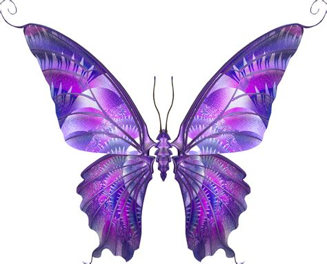 imagenes png mariposas marcos gratis para fotos mariposas png