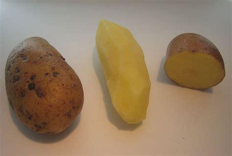 Potato Wiki by Almond Potato