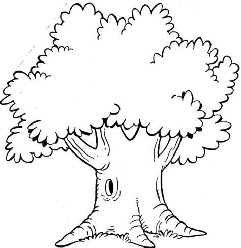 cara mewarnai pohon dengan watercolor mayagami pictures gambar sketsa pohon drawings art gallery