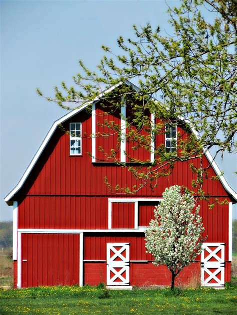 country life barns country life pinterest colors