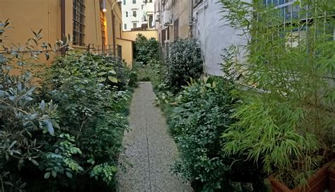 giardino in ombra giardino segreto all ombra dei palazzi