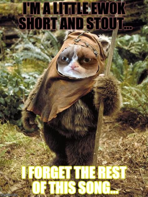 Ewoks Meme - grumpy ewok imgflip