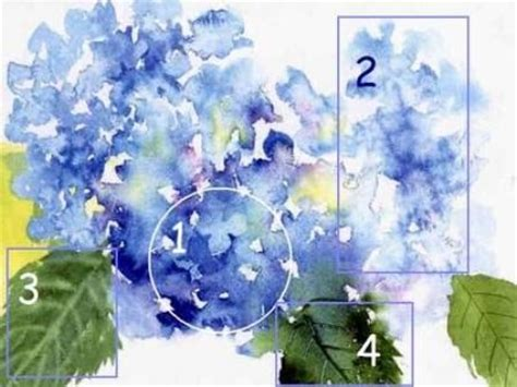watercolor hydrangea tutorial best ideas about hydranges watercolour painting
