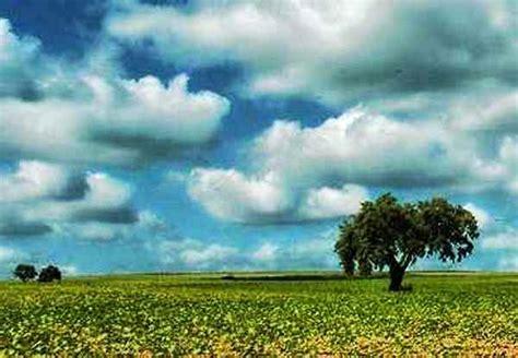 imagenes señales naturales paisajes naturales faciles de hacer imagui
