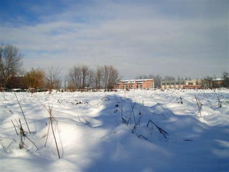 pavia meteo grieco la nevicata 2 3 12 05 a pavia foto di tommaso grieco