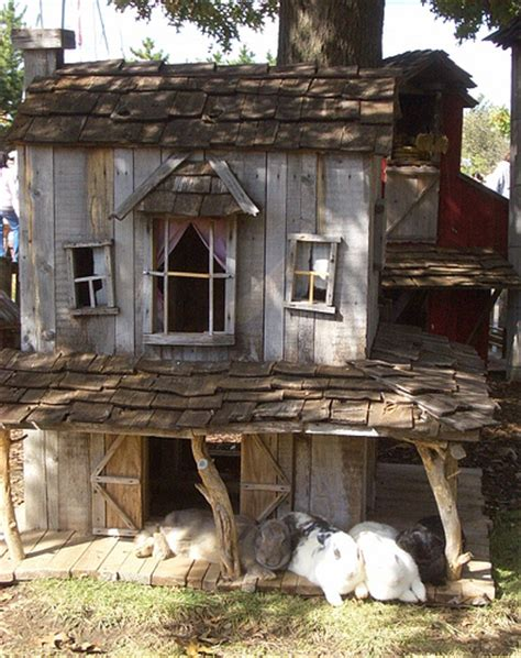 guinea pig hutch helloguineapig