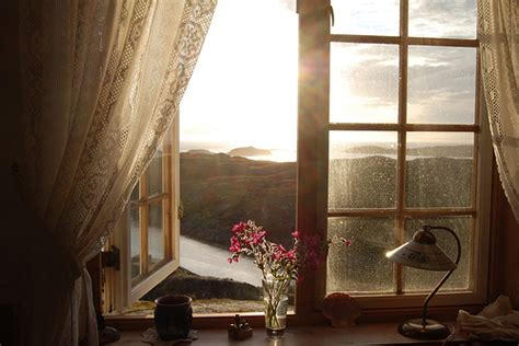 beautiful windows beautiful view flowers nature view window image