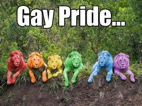 Gay Pride Meme - 26 best funny gay pride images on pinterest gay pride