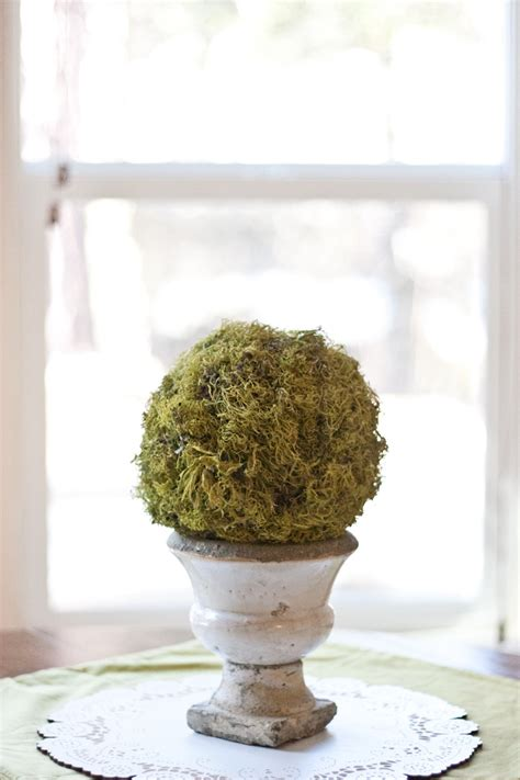 ny topiary 28 best images about topiaries on preserved