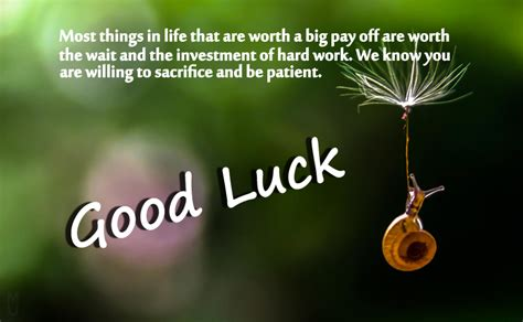wishing all the best messages luck messages wishes and quotes wishesmsg