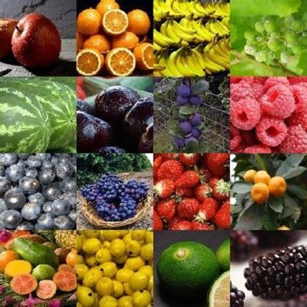 regime alimentare dimagrante dieta dukan dieta dukan dei 7 giorni 249 e