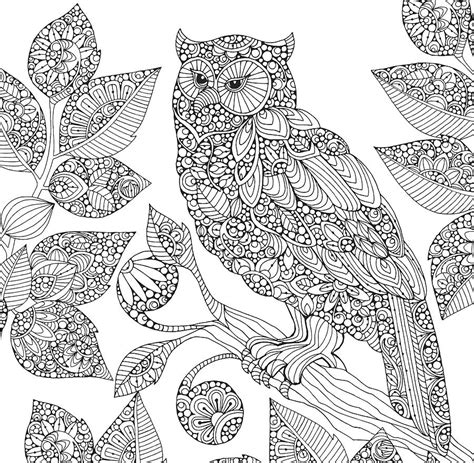 valentina designs coloring pages black and white owl drawing by valentina harper