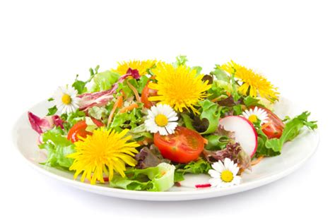 flower food recipe edible flowers and suggestions for recipes