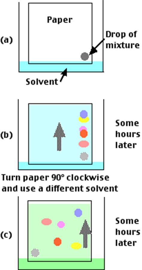 How To Make Chromatography Paper - paper chromatography