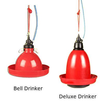 Bell Drinker bell drinker deluxe drinker in midc satpur nashik maharashtra india supreme equipments