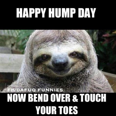 Happy Hump Day Meme - 50 beautiful hump day wish pictures and images