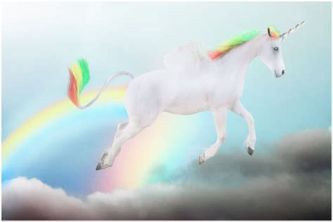 unicorn rainbow rainbow unicorn tumblr cake ideas and designs