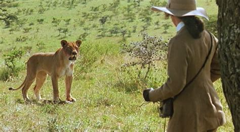film lioness out of africa 1985 review basementrejects