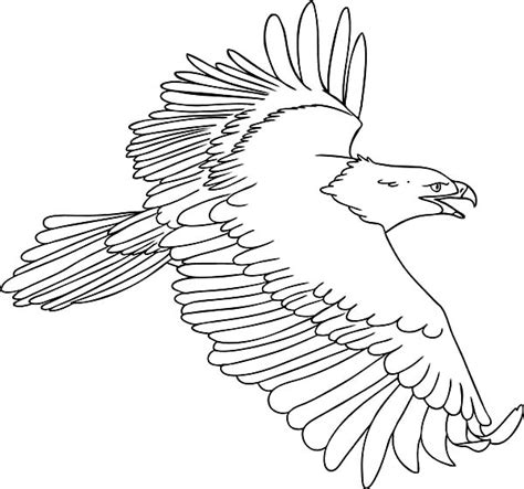 coloring page of eagle flying the flying bald eagle coloring page netart