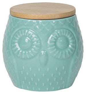 owl canisters for the kitchen owl canister turquoise from knitpicks