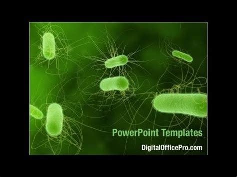 template ppt bacteria free bacteria powerpoint template backgrounds