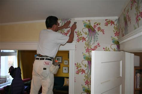putting up patterned wallpaper put a bird on it my new awesome wallpaper bossy color