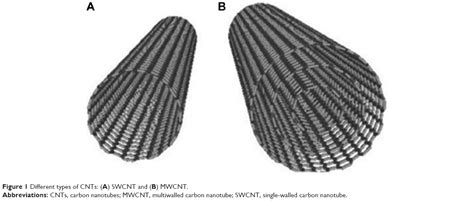 armchair carbon nanotubes full text impact of single walled carbon nanotubes on the embryo a brief review ijn
