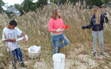 Hefinds Friday Clean Up by Students Take Part In Cleanup Kent County