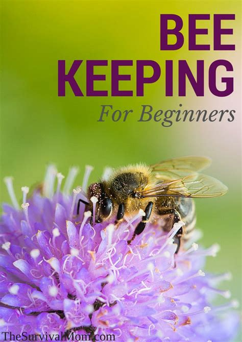 25 b 228 sta beekeeping for beginners id 233 erna p 229