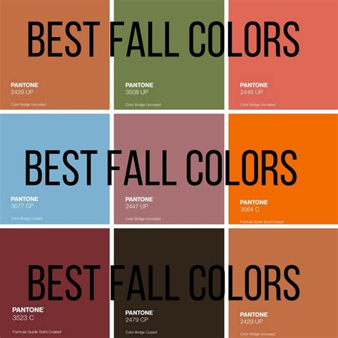 what is the best color the best colors to wear during the fall making it up