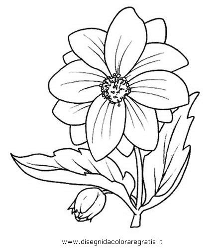 fiori disegnati da bambini disegno fiore dalia categoria natura da colorare