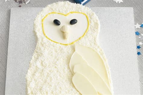 wise owl cake recipe taste com au