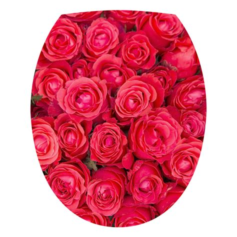 stickers muraux citations 3503 stickers muraux pour wc sticker mural roses rouges