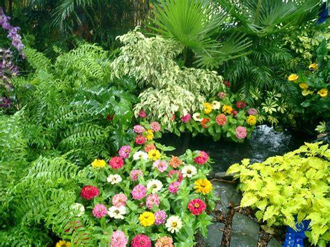 imagenes flores de jardin datoonz com plantas para jardins fotos v 225 rias id 233 ias