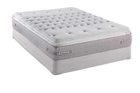Seally Mattress by Sealy Posturepedic Titanium Dsi Firm Pocketed Pillow