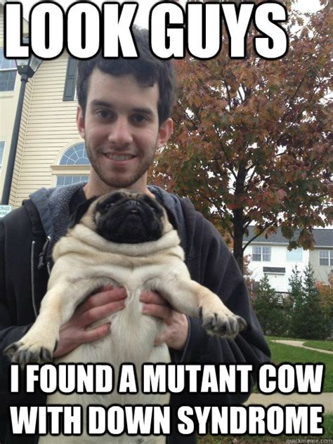 Funny Down Syndrome Memes - look guys i found a mutant cow with down syndrome garret