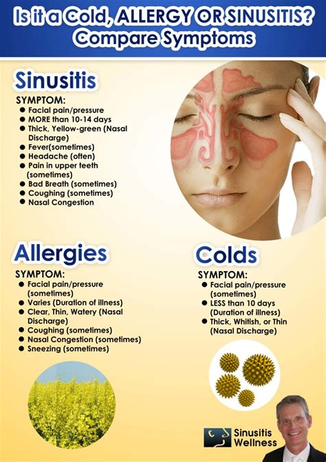 Sinus Detox Symptoms by Sinusitis Wellness Do I A Cold Allergies Or Sinusitis
