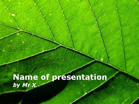powerpoint templates leaves free nature tree leaf powerpoint template
