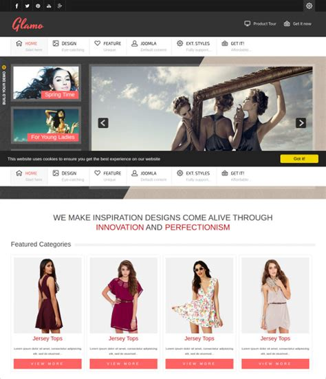 clothing site themes 20 retail website themes templates free premium