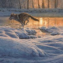 wildlife art wildlife paintings  artist martin ridley