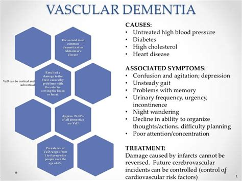 dementia symptoms what is vascular dementia doctor dementia and the dementia adventure