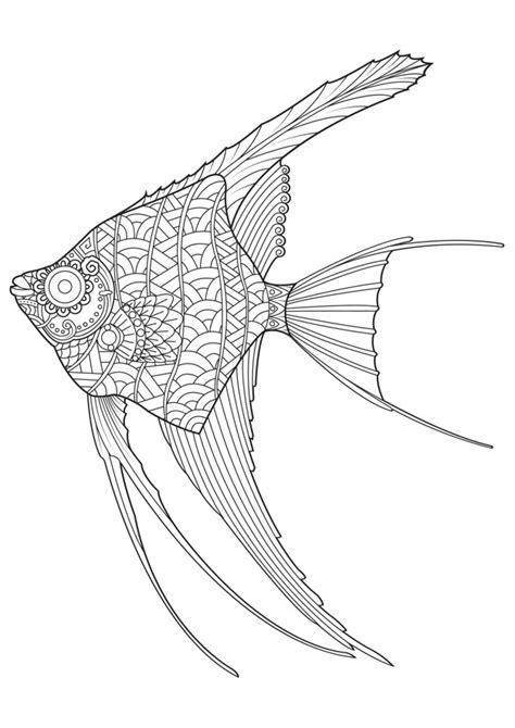 Dibujo de pez ángel dibujado a mano para colorear